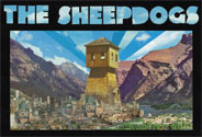1516BCT013_The-Sheepdogs_Thumbnail_184x125_v1