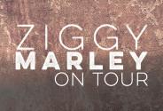 1617BCT008_Ziggy-Marley-Thumbnail